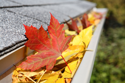 Fall Home Maintenance Guters
