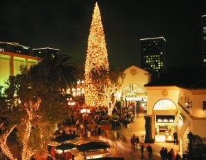 Things to do in Orange County Tree Lighting