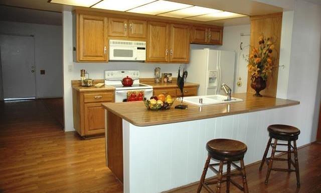 26420 Allentown Dr Sun City Kitchen