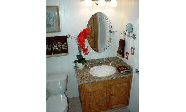 26420 Allentown Dr Sun City Master Bath