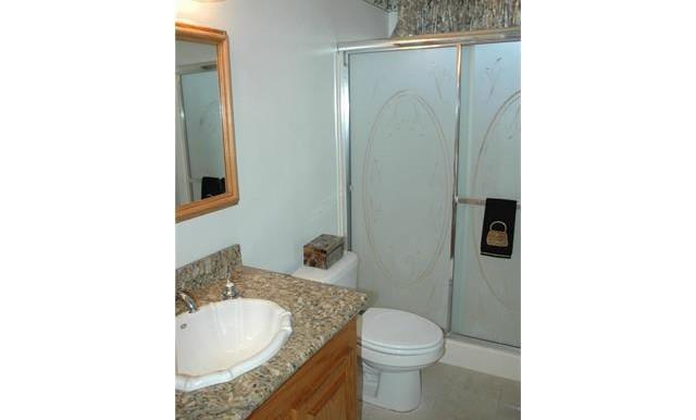 26420 Allentown Dr Sun City Second Bathroom