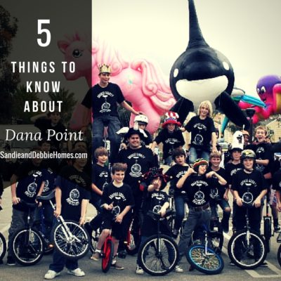 5 Things to Know About Living in Dana Point