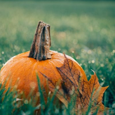 Fall and Halloween Activities in Orange County