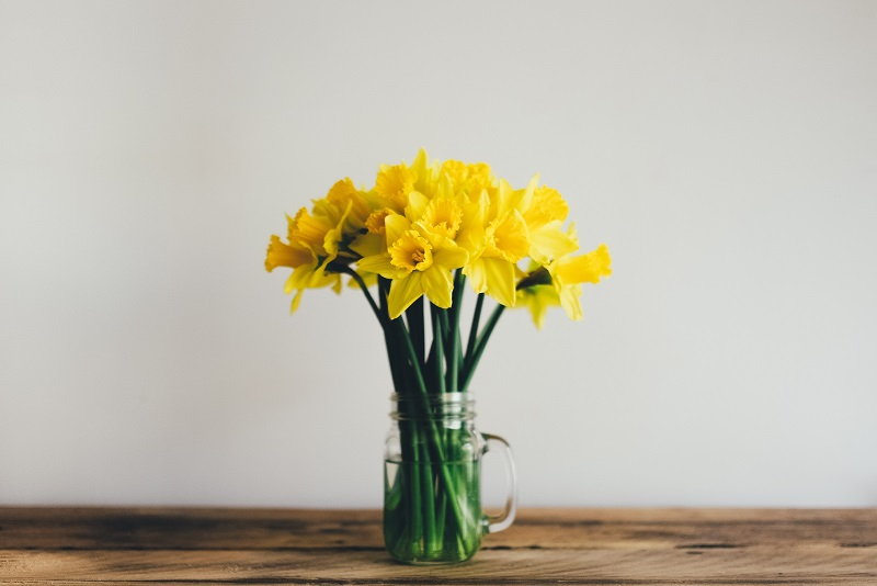 Spring Updates for your Home a Single Planter with Yellow Flowers on a Counter Top